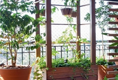 6 Dicas para incrementar seu Jardim!